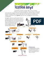 8.Classification Keys