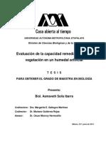 Evaluación de La Capacidad Remediadora de La Vegetación en Un Humedal Artificial