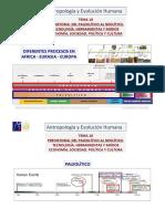 2014 Evolución Humana Temas 18 MTH Prehistoria - Del Paleolítico Al Neolítico