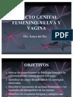 Genital Femenino. Vulva y Vagina