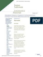 Anemia - Plantas Medicinais e Tratamentos Naturais