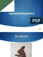 Aparat Respirator- Partea I- Plaman