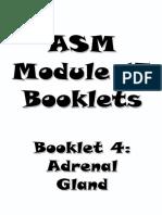 4- Adrenal Booklet.pdf