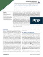 Heterochronic genes in plant evolution and development