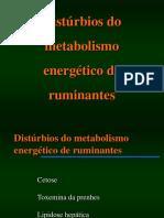 disturbio-metabolismo-energetico