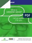 En Colorectal Cancer Guide for Patients