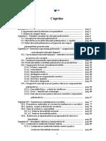 253413412 Lucrare Disertatie Finala Docx