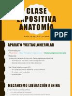 Clase Expositiva Anatomía Vallina