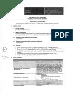 PROCESO CAS 006.pdf