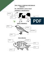 Vocabulario Tema 3 Ciencias Naturales