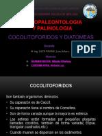 Cocolitoforidos y Diatomeas g6