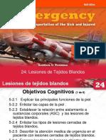Lesion de Tejidos Blandos