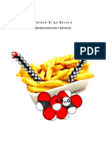 03.Carbohidratos y Lípidos
