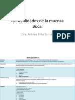 Generalidades de La Mucosa Bucal