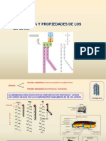 Tema 6 Estructura y Propiedades de Los Lipidos