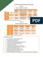 Clasificacion de Las Empresas en Bolivia Por Tamano