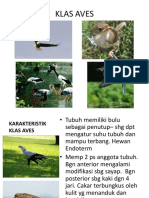 8_AVES.pdf