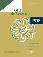 156-Gutierrez. Musaceae.pdf