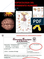 Neuropsicologia Del Comportamiento Humano