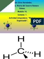 OlivoHernandez_Anahi_M14S1_materia-organizada+DC