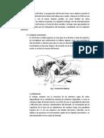 APORTE TERCER PUNTO DISEÑO DE RELLENOS SANITARIOS.docx