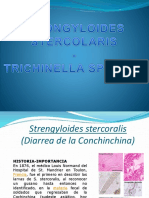 Clase Strongyloides y Triquinosis