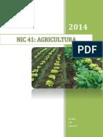 230768254-Nic-41-Monografia.docx