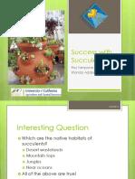Succulents guide
