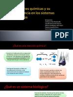 Reacciones Quimicas.pptx 2(1)