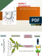GENES Y DESARROLLO.pdf