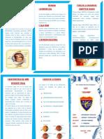 triptico de la tierra.pdf