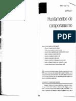 2017830_14026_grupos+e+equipes.pdf