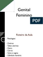 Aula Genital- Mariana 5.9.17