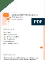 Sistem Metabolik Dan Endokrin
