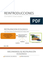 REINTRODUCCIONES.pptx
