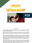Proyecto Lactancia Materna