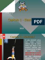 1 ELASTICIDAD