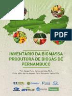 Celpe - Projeto Biogas_ebook
