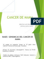 Cancer de Mama Expo Mia