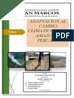 Informe de Cambios Climaticos en La Amazonia