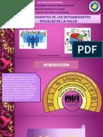 DETERMINANTES SOCIALES.pptx