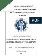 Practicas pre profecionales palta.pdf