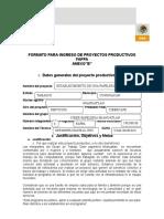 B FORMATO MIAHUATLAN_CIBER.doc