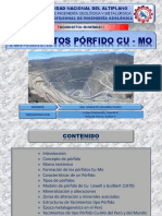 TEMA 6. Yacimientos Porfidos Cu-Mo Animal
