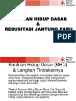bhd RJP PMI