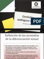 GENITALES AMBIGUOS