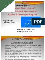 Summer Training Report on Ajanta