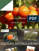 Caquizeiro .pptx