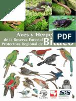 Aves y Herpetos de Bitaco