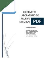 Informe Pruebas Fisico- Quimicas Del Agua